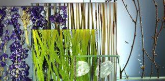 Luxus Spa tropisches Klima im private Spadesign